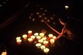 Спуск фонарей на воду является частью ритуала, посвященного морскому богу