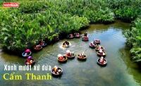 Xanh mướt xứ dừa Cẩm Thanh