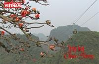 Trẩy hội chùa Hương