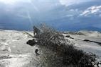 Mỗi ngày, hàng triệu mét khối cát được hút từ biển vào để gia cố mặt nền.