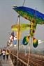 L'exposition des peintures sur les ailes des cerf-volants.
