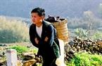 Chàng trai Mông cõng trên lưng những chú lợn ra chợ bán.