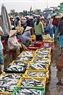 Ước tính mỗi ngày lượng cá giao dịch tại chợ cá Phan Thiết lên đến hàng ngàn tấn.