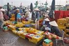 Cá được phân loại sẵn ra từng khay cho tiện việc mua bán.