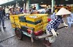 Đội quân kéo xe ba gác ở chợ cá Phan Thiết phần đông là phụ nữ.