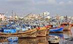 Cảnh thuyền ghe san sát tại bến sông sát chợ cá Phan Thiết.