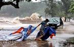 Bão số 1 (tên quốc tế là bão Côn Sơn) hoành hành ở Hải Phòng.