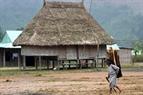 Bà Alăng Bak làng Pức, xã Gri, huyện Tây Giang, tỉnh Quảng Nam mặc dù trời lạnh nhưng vẫn tiếp tục gùi củi về sưởi ấm.