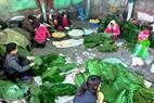 Gia đình ông Phạm Văn Quân (53 tuổi) mỗi người một việc cùng gói bánh chưng.