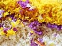 Món xôi nhiều màu sử dụng các loài cây cỏ khác nhau (cẩm, mật mông hoa, núc nác, chít, rau khúc, gừng, mơ leo, nghệ, lúa nếp…) để nhuộm.