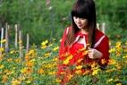Thiếu nữ Hà Thành ngỡ ngàng như lạc giữa một rừng hoa bướm.