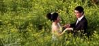 Đôi uyên ương say đắm giữa sắc vàng của vườn hoa cải.
