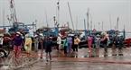 Những chiếc tàu câu cá ngừ đại dương trên cảng cá Tuy Hòa.
