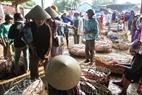 Gần 40 năm nay, chợ heo Bà Rén họp tất cả các ngày trong năm, trừ ngày Tết.