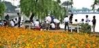 Chơi cờ tướng trong khuôn viên hồ Trúc Bạch vào mỗi buổi chiều tà là thú vui của không ít người Hà Nội.