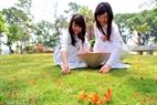 Những cô bé vui tươi nhặt những bông hoa Phượng rơi dưới thảm cỏ xanh mướt.