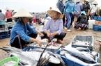 Chợ có nhiều giống cá tươi phong phú.