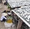 Mái chợ cũng được tận dụng làm nơi phơi cá.
