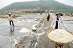 Muối được chất thành đống và chuyển về kho chứa.