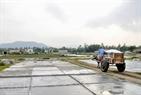 Xe trâu cũng được sử dụng để vận chuyển muối.