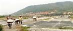 Từng đoàn xe chất đầy muối được chuyển về kho chứa.