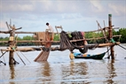 Đánh cá bằng đáy, nghề phổ biến ở miền sông nước Cà Mau.