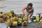 Sầu riêng, loại trái cây đặc sản Nam Bộ được bán tại chợ nổi Ngã Bảy.