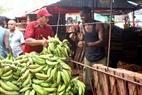 Nông dân chuyển nông sản vào chợ.
