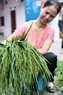 筛选最好的糯谷做扁米。功达  摄