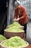 Selecting the best grains for making green rice flakes. Photo: Cong Dat