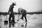 Изо дня в день сотни местных жителей работают на обременительном производстве по добычи соли