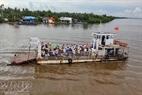 Phà Tắc Cậu - Xẻo Rô trên sông Cái Lớn.