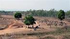 La Plaine des Jarres est située sur la province de Xieng Khuang (Laos).