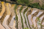 The terraced fields is filled with water to prepare for a new crop.