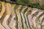 El agua hacia las terrazas de arroz.