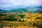 La belleza de los arrozales en terrazas en La Pan Tan ha sido clasificada entre los sitios de interés a nivel nacional.