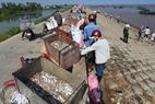 海産物は通常漁業者によりバイクで消費地へ運ばれる。
