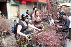 At a flower market in the Old Quarter of Hanoi.