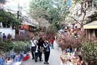 The flower market on Hang Luoc Street.