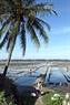 Giờ thu hoạch muối của diêm dân Sa Huỳnh bắt đầu từ 3h chiều.