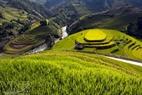 Vượt đèo Khâu Phạ, bắt đầu vào đến địa phận Mù Cang Chải là các thửa ruộng bậc thang hiện lên như những mảng màu lớn uốn lượn trên bức tranh hùng vĩ được giới hạn bởi trời và đất.