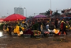 Nhat Tan flower market is crowded with people from the early morning.