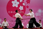 Performing traditional martial arts of Japan at the festival.