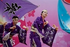 The Maika dance troupe (Japan) performs Yosakoi - a traditional dance which is one of the activities at the Japanese Cherry Blossom Festival.