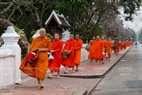 Monks from each pagoda walk in a single line led by the abbot.