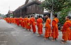 Monks from different temples line up in a single line on the alms round.