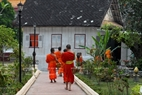 After 40 minutes of alms collecting, the monks go back to their pagodas.