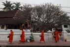 Khoảng 6h sáng mỗi ngày, các nhà sư ở Tp. Luang Prabang rời các ngôi chùa thực hiện nghi lễ khất thực trên đường phố.