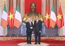 Tổng thống Cộng hòa Ireland Michael Daniel Higgins đang có chuyến thăm cấp Nhà nước tới Việt Nam (từ ngày 5-14/11/2016). Sáng 7/11/2016, Lễ đón chính thức đã được tổ chức trọng thể tại Phủ Chủ tịch. Trong ảnh: Chủ tịch nước Trần Đại Quang đón tiếp Tổng thống Michael Daniel Higgins tại Phủ Chủ tịch. Ảnh: Nhan Sáng/TTXVN