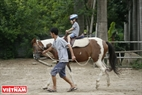The Hanoi Horse Club holds therapeutic horse riding sessions for disabled and autistic children. Photo: Cong Dat